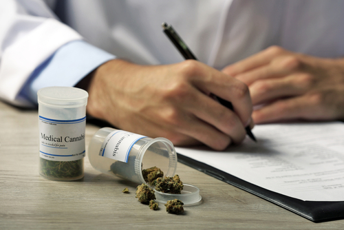 The 3 Most Important Cannabis Medical Uses You Should Know article image by Medicalcannabisaust.com.au